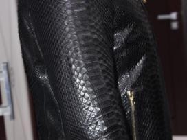 Zilli Pythono striuke - nuotraukos Nr. 2