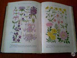 Knygos Nacionalinė geografija - nuotraukos Nr. 4