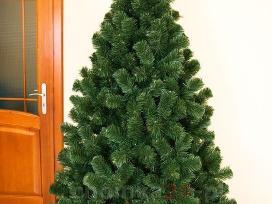 Nuostabi Kalėdinė eglutė už gerą kainą 2.2m