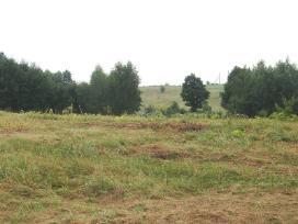 Parduodamas žemės sklypas lapių sen. - nuotraukos Nr. 7