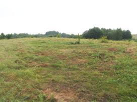Parduodamas žemės sklypas lapių sen. - nuotraukos Nr. 8