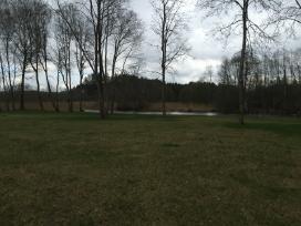 Pakrante prie Sventosios upes 1500a , Utenos raj