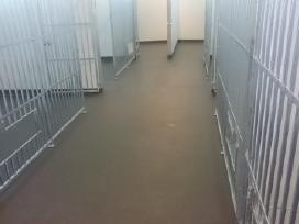 Liejamos dazomos epoksidines grindys