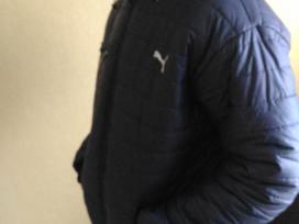 """""""Puma"""" nauja žieminė striukė"""