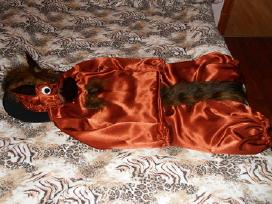 Karnavaliniu kostiumu nuoma vaikams 3-8metai.