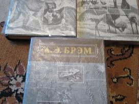 Rusu kalba А.э. Брэм Жизнь животных в 3-х томах