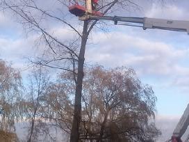 Medžių pjovimas,genejimaskelmų rovimas išvežimas