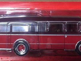Autobus dal mondo