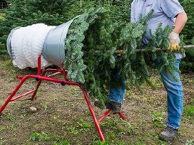 Tinklas Kalėdų eglutėms pakuoti xmas net