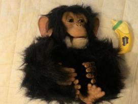 Beždžionėlė su funkcijomis