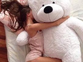 Didelis pliušinis meškinas Teddy bear 200cm