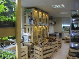 Dekoracijos akvariumų įrengimui
