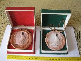 Senoviniai Dailes Moliniai Medaliai