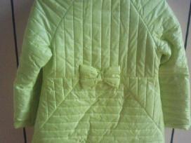 Paltukas+rankinukas