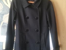 Klasikinis paltukas