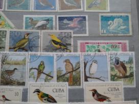 Pašto ženklai - nuotraukos Nr. 8