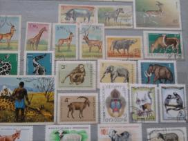 Pašto ženklai - nuotraukos Nr. 10