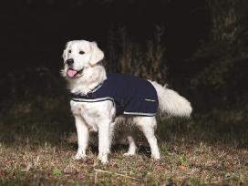 Kokybiški apsiaustai šunims, nuo mažiausio iki Xxl