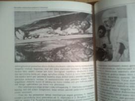 """Nijole Dariute Mastariene """"Darius ir Girenas""""1990m - nuotraukos Nr. 9"""
