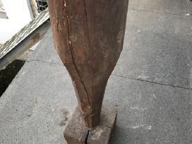 Senovine medine trintuve-kultuve