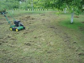 Apželdinimas, aeravimas, žolės, krūmų pjovimas