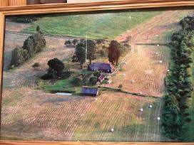 Parduodu sena sodyba su 9.6 ha zemes Klaipedos ap