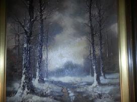 Olandu dailininko gražus paveikslas kaina 200 Euru