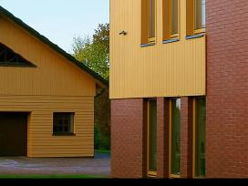 Mediniu namu, fasadu dažymas