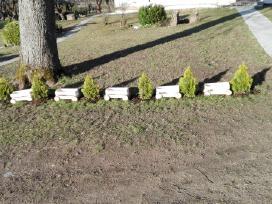 Medinės dėžes - nuotraukos Nr. 8