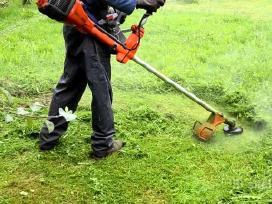 Vejos, žolės pjovimas, aplinkos tvarkymas