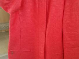 Raudonas Zara paltukas