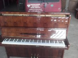 Nuomoju koncertini pianina Petrof
