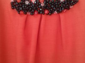 Klasikinė ryškios raudonos spalvos suknelė