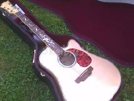 Vokiška gitara Msa