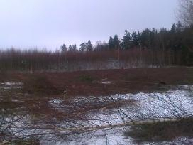 Tvarkome apleistus laukus,zemes.mokame100-300eu/ha