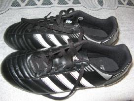 Butsai Adidas