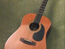 Elektrinė gitara Elevation Cst6 ir kitos
