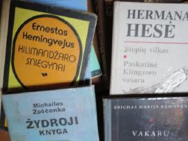 Ž. Vernas, Main Ridas, Hese, Hemingvejus