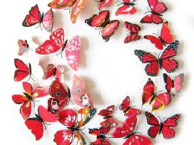 Spalvoti 3D dekoraciniai interjero drugeliai