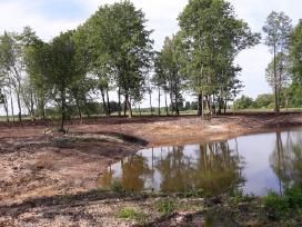 Tvenkinių kasimas,ekskavatoriaus nuoma,žemės darba
