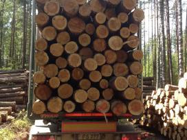 Vilkiko vairuotojas medienos pervežimui