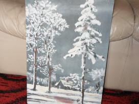 Parduodu paveiksla ziemos motyvai. Kaina:45eur