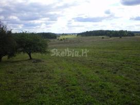 Perkame mišką, žemes, pievas dirbamas ir apleistas