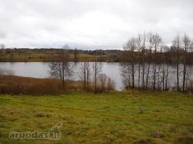 Skubiai 1.1 ha.sklypas Traku r.ant ezero kranto - nuotraukos Nr. 2