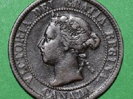 Canada 1899 pinigas 1 cent,3868