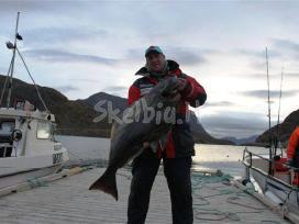 Organizuoju žvejybines keliones i Norvegiją