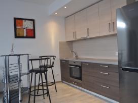 Išnuomojamas naujai įrengtas 2 kambarių butas