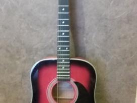 Austine gitara + Viršelis