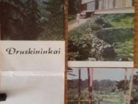 Druskinikai Biuveto vitrazai 1969m. Mintis