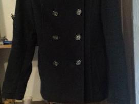Juodas grazus paltukas